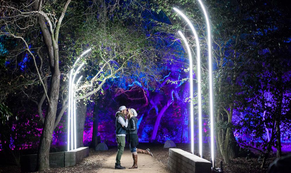 Grandma2 Onpc For Enchanted Forest Of Light Ma Lighting International Gmbh